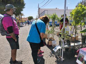 183464346_986519042085950_8107479753536662212_n-300x225 Cerca de 2000 personas disfrutaron del Mercado de Tetir