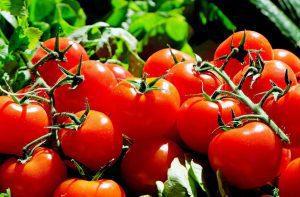 tomatoes-1280859_1280-300x197 Apuesta por renovar la imagen del Mercado de la Biosfera